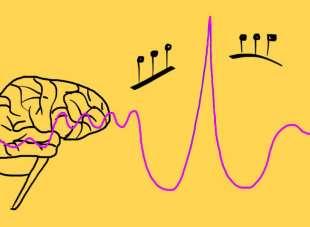 Esiste una musica BIOLOGICAMENTE sensata? (prima parte)